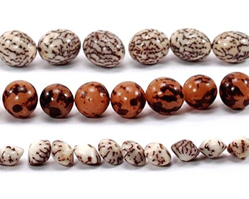 Holzperlen, Nüsse, Samen